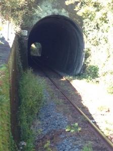 トンネル 予讃線.jpg