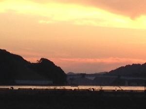 九島に沈む夕日.jpg