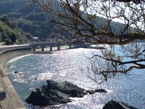 太陽に光る長浜の海.jpg